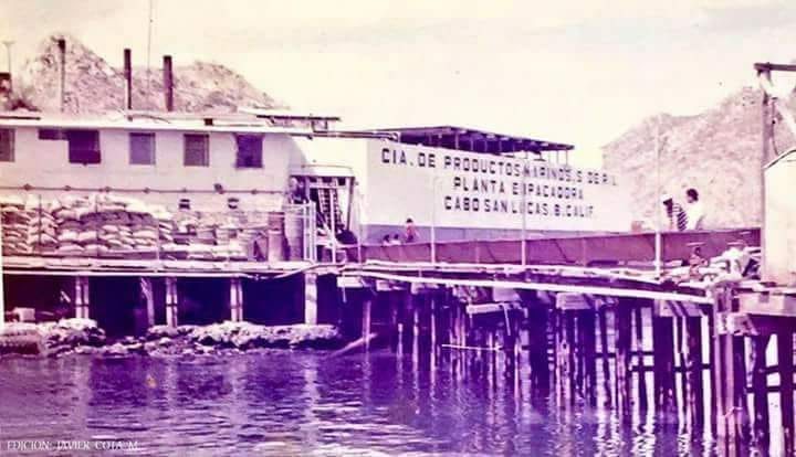 Grand Solmar Vacation Club Discusses History in Cabo (1)