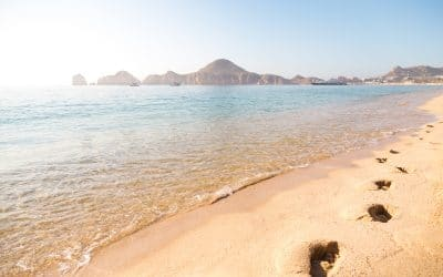 Grand Solmar Vacation Club – Tips For A Last Minute Vacation in Cabo San Lucas