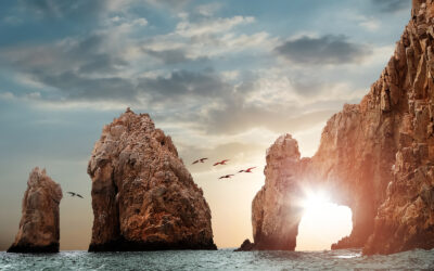 Grand Solmar Vacation Club Why People Love Cabo